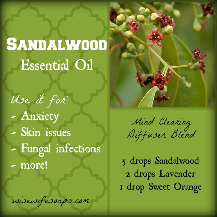 Sandalwood Essential Oil Uses and Info PLUS Mind Clearing Diffuser Blend.