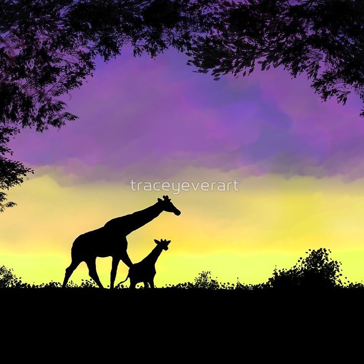 Mother and baby giraffe at sunset wall clock by Tracey Lee Art Designs