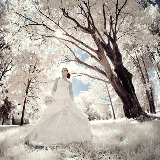 Infrared #wedding