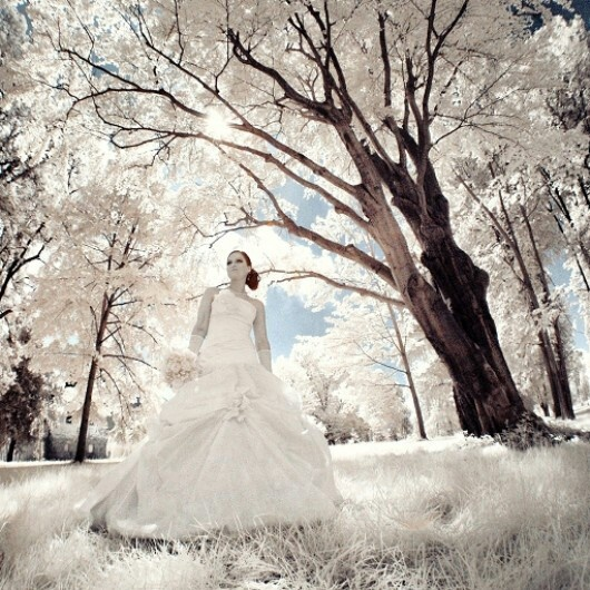 Infrared #wedding