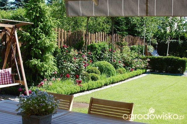Ogród dla roślin o mocnych nerwach