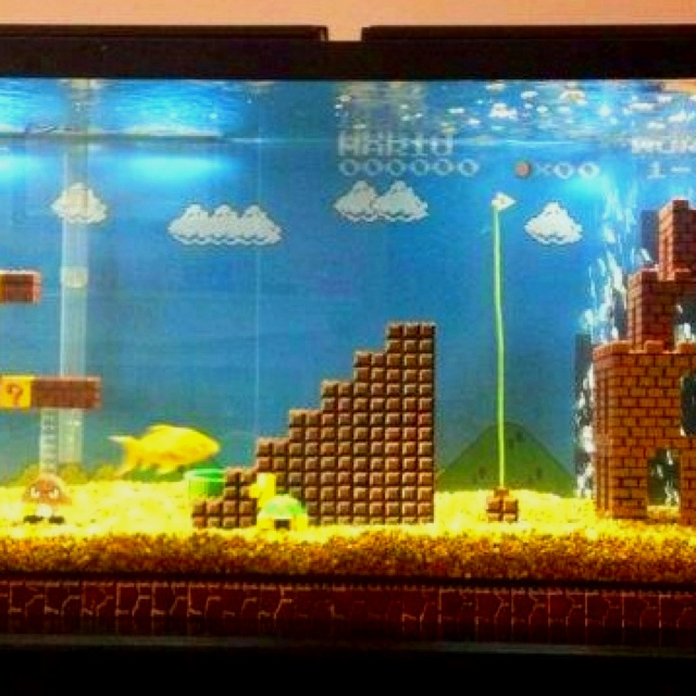Mario scene fish tank Fun Objects Pinterest