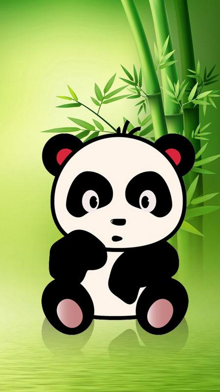 Iphone X Cute Panda Wallpaper Best Hd Wallpapers Cute