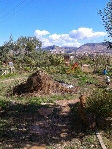 Mirando a Cuenca (I) - Huertos Compartidos