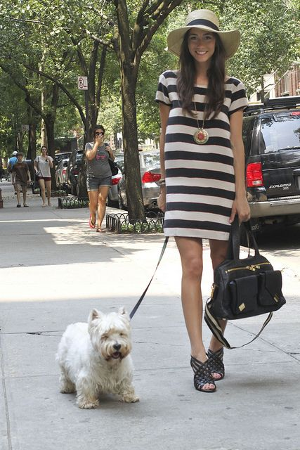 Simple stripe shift dress with cute accessories . My favourite is the dog ! Stripes in streetstyle