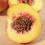 Sukadelapjes met perziken in honing-ketjapsaus