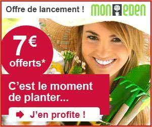 Offre de lancement Mon Eden : plantes vivaces à -50%, 2 ...