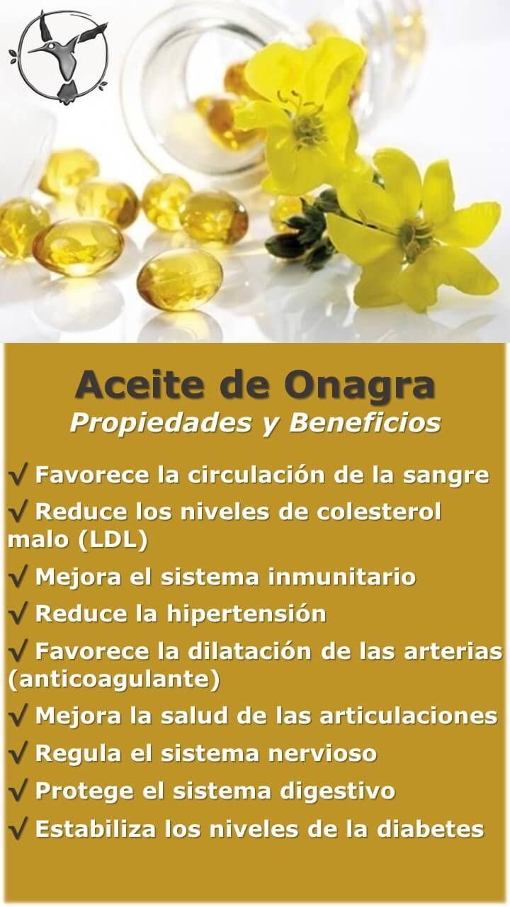 #salud #mujer #onagra #beneficios #aceite #flor #propiedades #oil #ergosphere