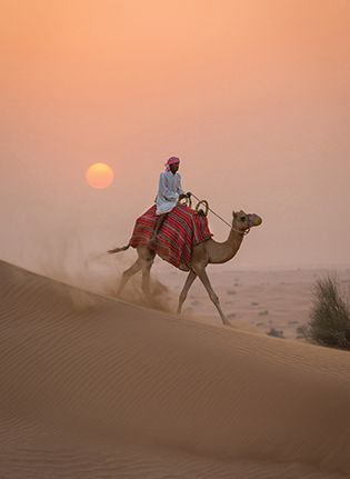 Embark on a safari tour in the desert just outside of Dubai.