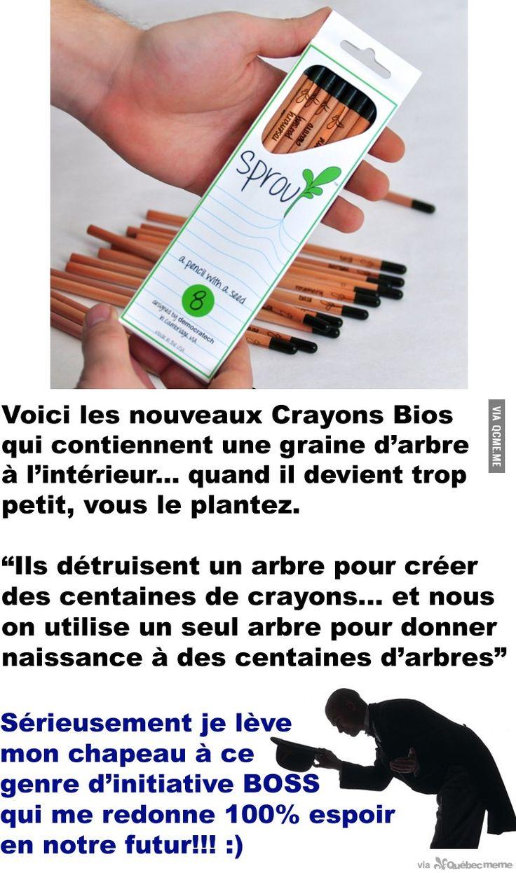 WOW. Voici les nouveaux Crayons Bios qui contiennent une graine d'arbre à l'intérieur... une idée de GÉNIE: