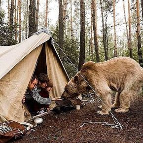 Is this photoshopped? Let us know in the comments! #SurvivalLife | : @bushcraft__woodsman