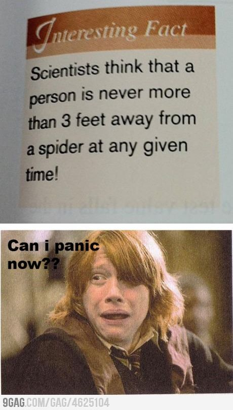 He can panic if I can panic!!!!!!! Spiders are awful creatures!!!