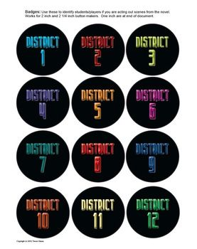 Hunger Games District Badges - great for a class reaping activity