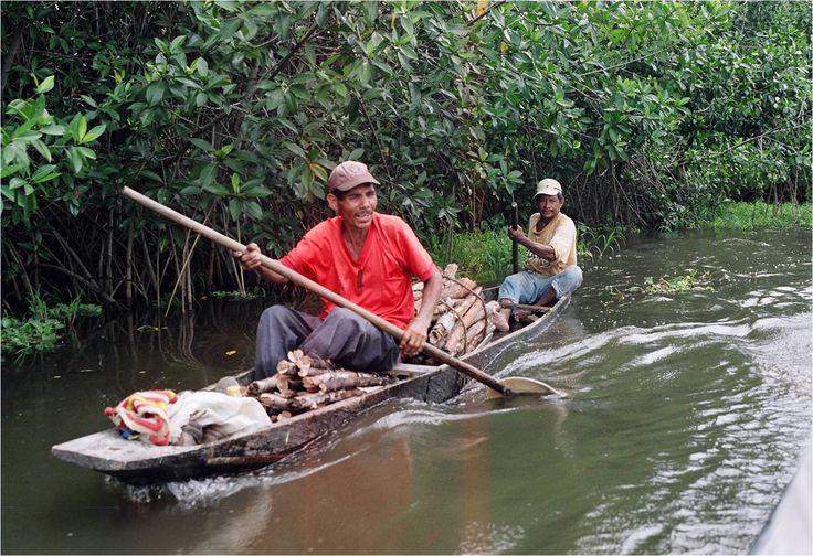 El análisis histórico y la ecología política crean un ángulo particular a partir del cual tres investigadores colombianos aportan en la comprensión de los complejos conflictos ambientales de un territorio estratégico, que abrazan los valles de los ríos Sinú y San Jorge.