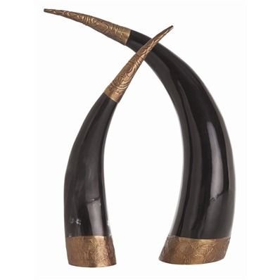 Diana Authentic Horns, Set of 2