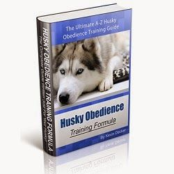 Husky Obedience Training Formula will teach you how to use simple voice commands, hand gestures, and well-timed positive reinforcement methods to put a stop to your husky's bad habits, make your husky happy, healthy, and obedient.