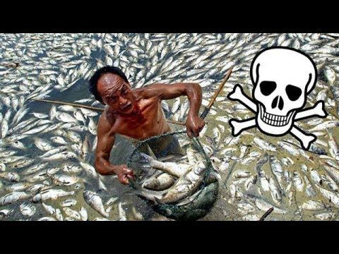 TOP 10 MOST DANGEROUS CHINESE PRODUCTS
