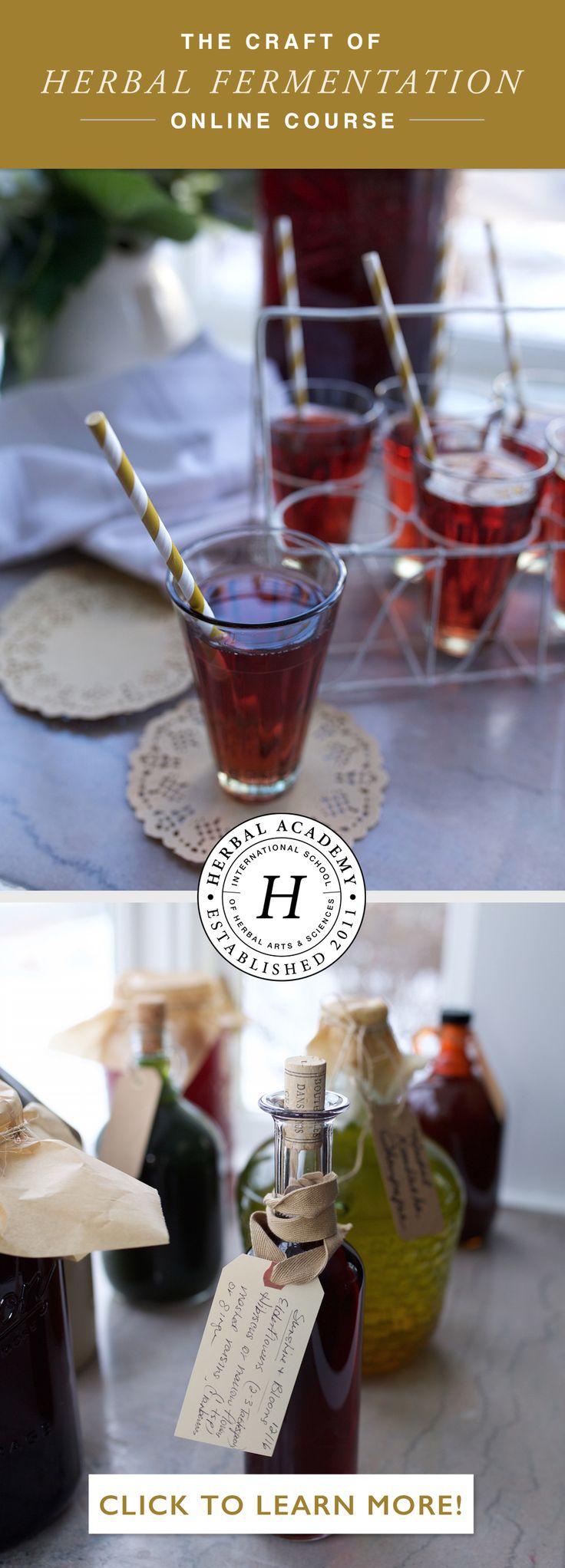 DIY Herbal Kombucha, Meads, Beer, and Fermented Foods! Sign up!