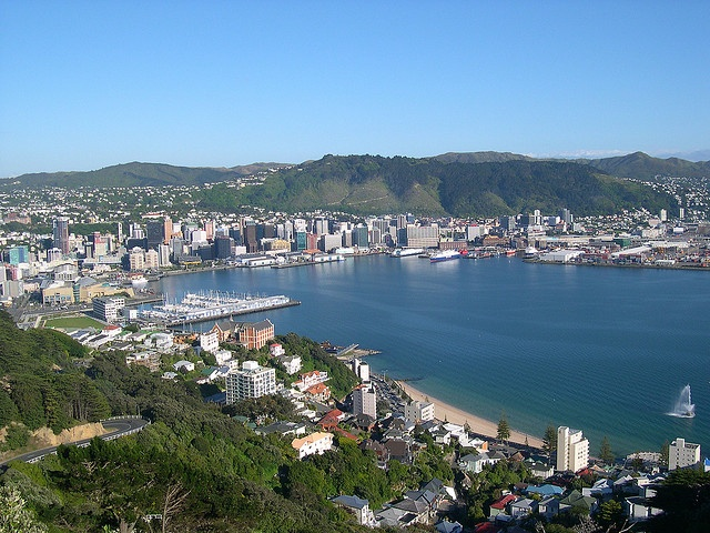 A view over #Wellington from Mount Victoria; One of the stops on the Wellington Hop-on Hop-off bus route