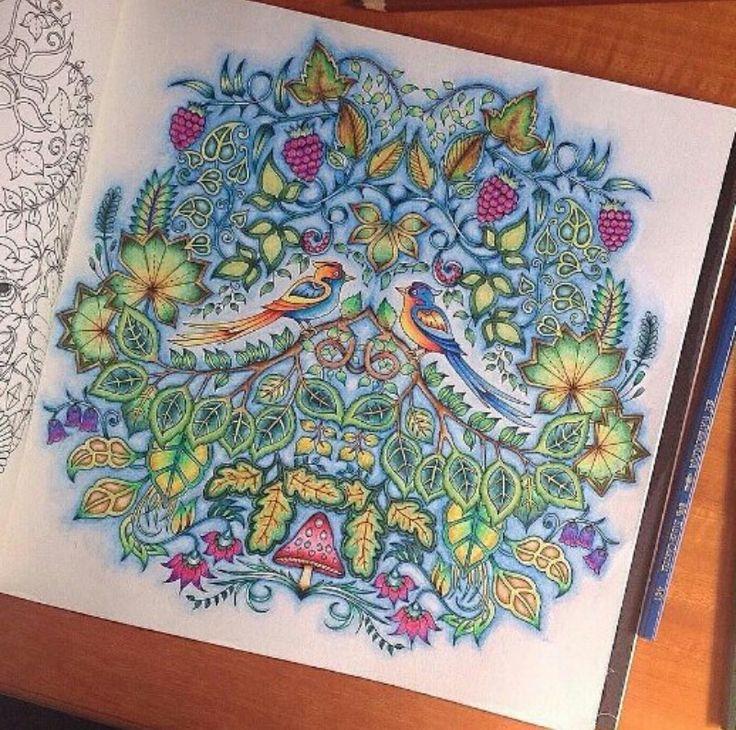 Inspiracao Floresta Encantada Colored Pencil TutorialJohanna BasfordColoring BooksColouringColored