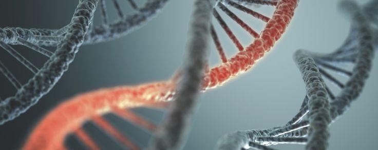 Stockholm 29 – 31 januari 2016, Ersta konferens.  Lär dig att använda och tolka DNA-test för en individanpassad behandlingsplan.