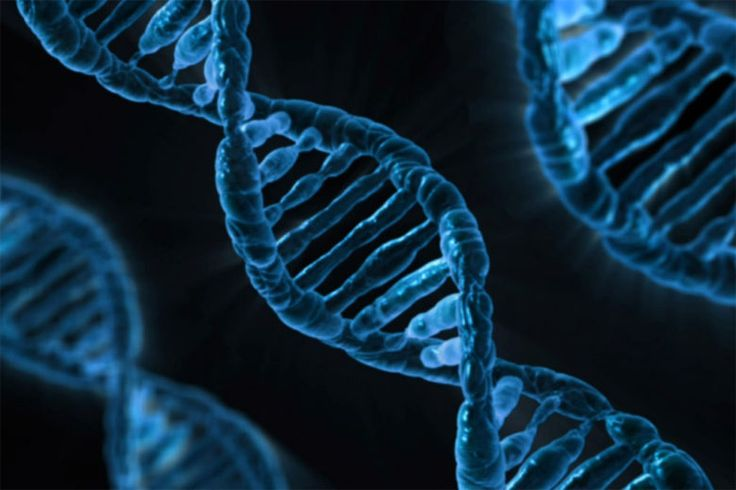 Scientists propose creation of synthetic human genome   VentureBeat   OffBeat   by Reuters