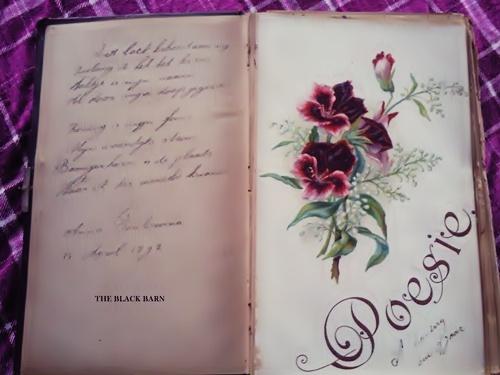poezie albums