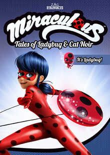 Miraculous Ladybug & Cat Noir - more adventures from Paris coming to DVD in May 2017!