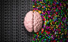 What type of Brain you Have, Logical or creative – Quiz