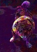 "New artwork for sale! - "" Pug Dog Animal Funny Cute Breed  by PixBreak Art "" - http://ift.tt/2gRtq5k"