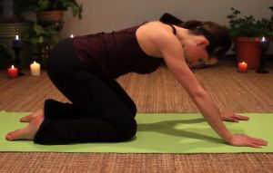 Yoga and fai of the hip yoga for incontinence and pelvic for Pelvic floor yoga