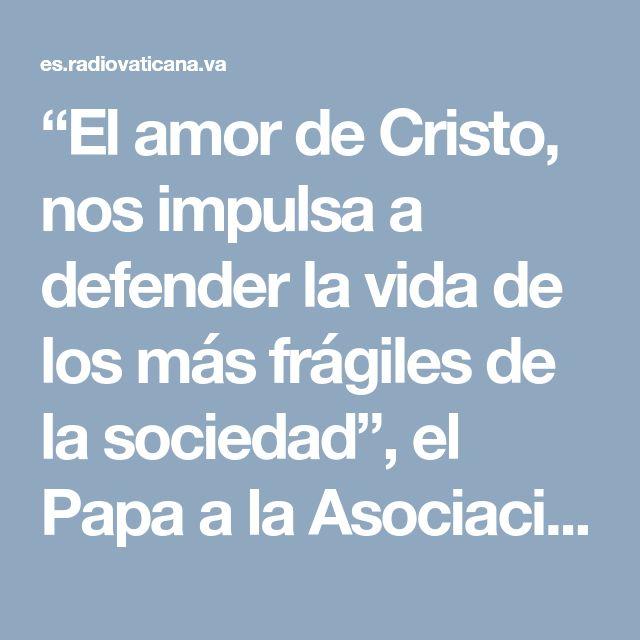 """""""El amor de Cristo, nos impulsa a defender la vida de los más frágiles de la sociedad"""", el Papa a la Asociación Ciencia y Vida - Radio Vaticano"""