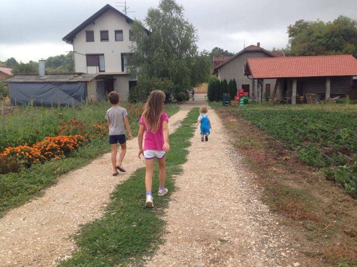 Umjetnica i profesorica pobjegla iz grada: Život na selu podsjeća na nekadašnji život u bivšoj Jugoslaviji