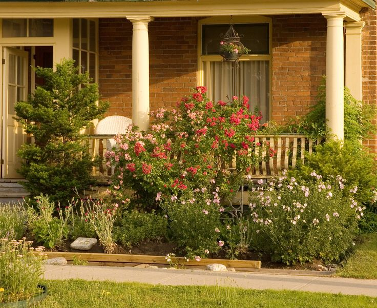 Love The Wildflower Look Of This Flower Bed When We Pull Everything Out Of The Front Flowerbed