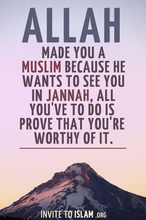 Allah made you a Muslim because ...