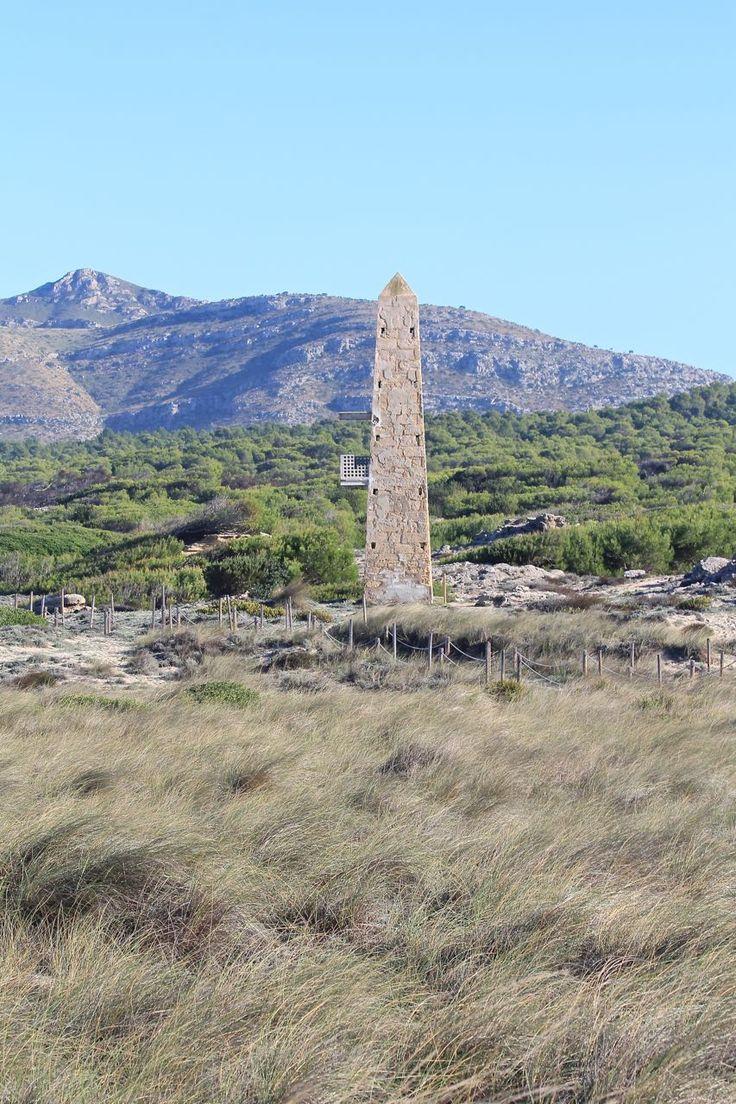 Mallorca - Wanderung von Son Serra de Marina nach Colònia de Sant Pere mit Geheimtipp <3 Labsalliebe