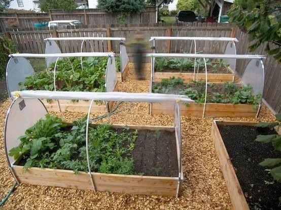 Odla i pallkrage har många fördelar som att det går snabbt och lätt att anlägga en upphöjd odling, samt att det blir lättskött. I en upphöjd bädd värms jorden upp snabbare på våren och man kommer igång tidigare. Här får du tips om hur du bygger skydd mot skadedjur, skapar gynnsamt mikroklimat och så mycket mer.