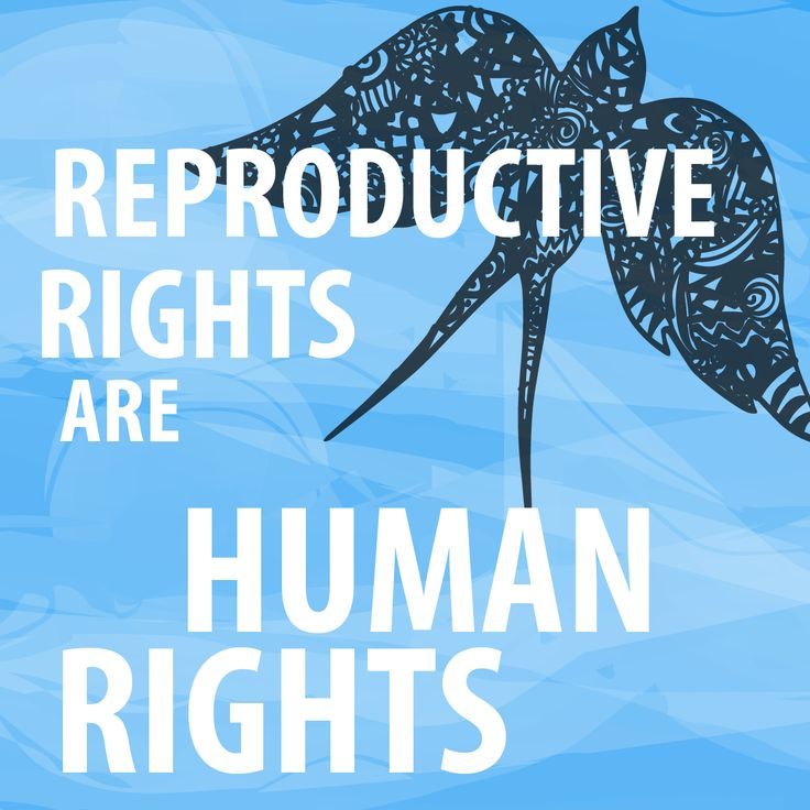 Image result for stand up for reproductive justice