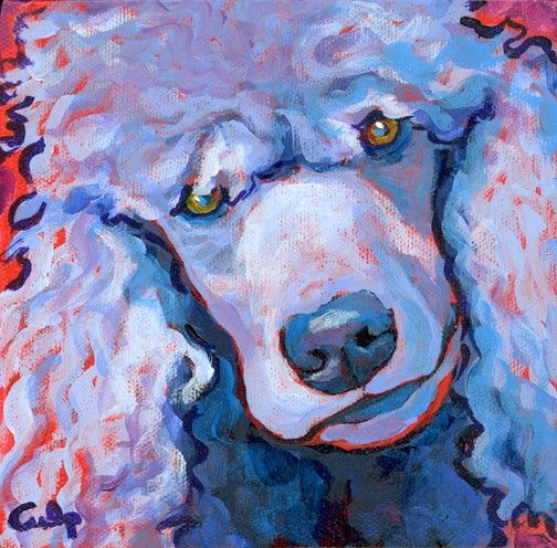 Beautiful painting face shot of a standard poodle.