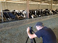 Cowspiracy: The film environmental organizations don't want you to see.