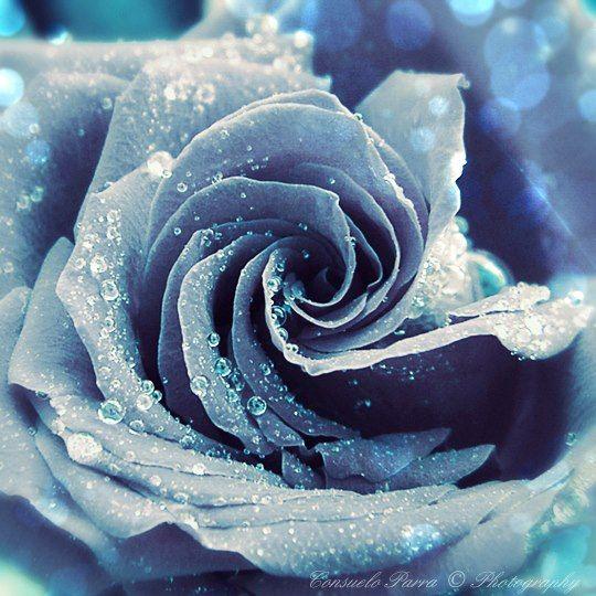El matrimonio es como la vida real; un campo de batalla y no un lecho de rosas. (Robert Louis Stevenson)