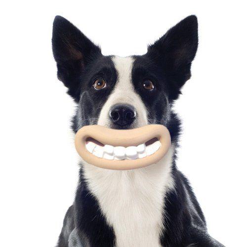 Jouet Wallace et Gromit Bouche - Jouet à mâcher pour chien - / wanimo