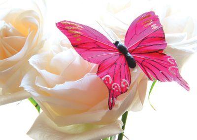 Butterfly #flower #postcards