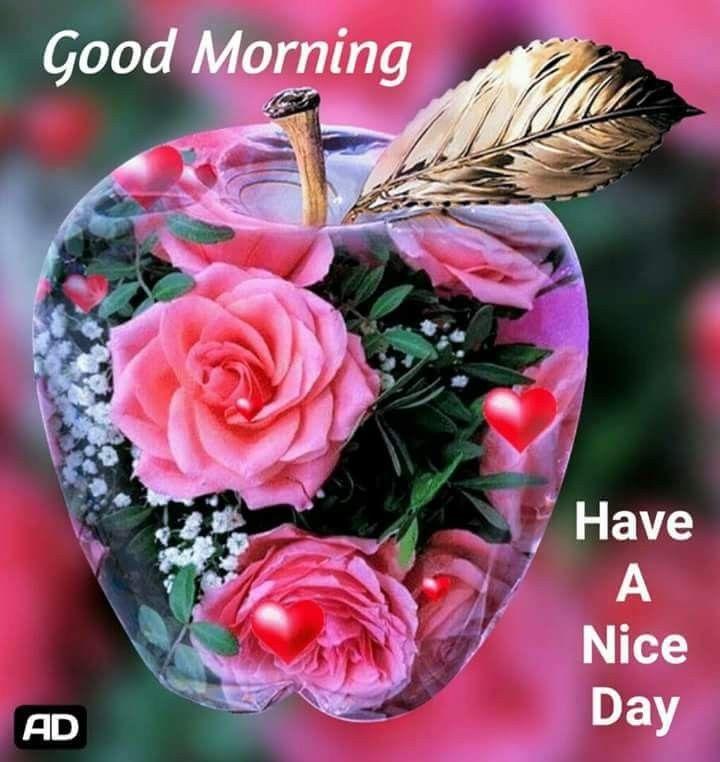 Guten Morgen Bilder Sprüche, Zitate Zu Guten Morgen, Guten Morgen Bilder,  Positive Zitate, Kaffee Am Morgen, Valentinstag, Gadgets, Gute Nacht, Guten  Morgen