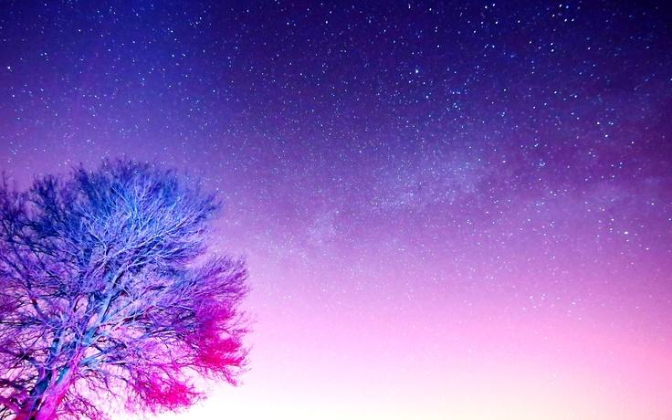 L'albero, la via lattea