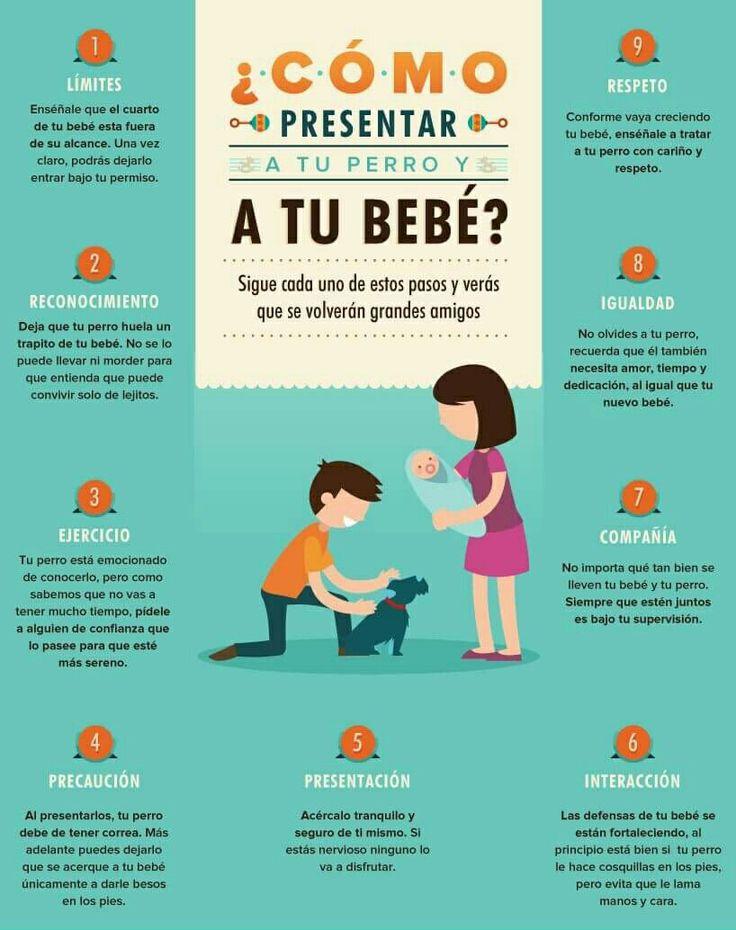 #maternidad #felicidad #bebe #gestacionsubrogada #fiv #ovodonacion #BioTexCom #Ucrania #quierosermadre #embarazo