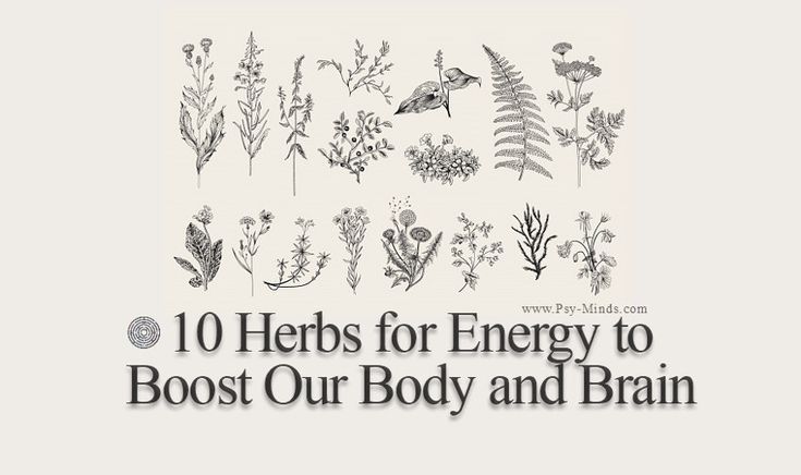 10 Herbs for Energy to Boost Our Body and Brain - @psyminds17