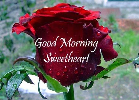 romantic good morning sms girlfriend