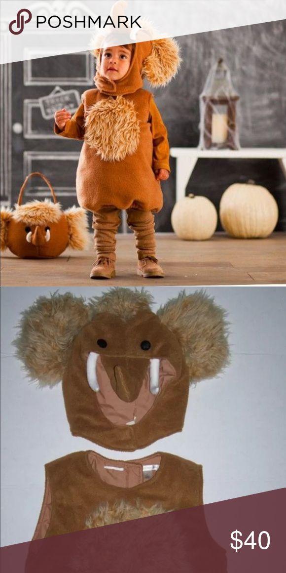 Woolly Mammoth Costume Pottery Barn Kids Costume