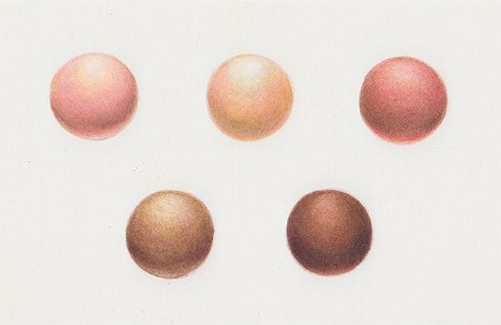 Explore How to Create Skin Tones With Colored Pencils
